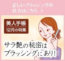 美人手帳12月の特集サラ艶の秘密はブラッシングにあり!