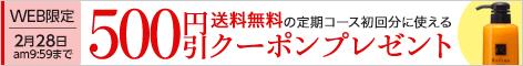 定期コース初回分に使える500円クーポンプレゼント