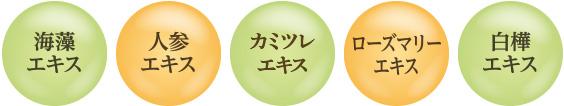 [海藻エキス][人参エキス][天然プロテイン][ローズマリーエキス][白樺エキス]