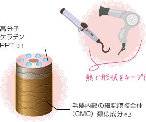 熱で形状をキープ!熱反応性ラクトン誘導体ナノカプセル。α−ケラトース。熱反応性加水分解シルク誘導体