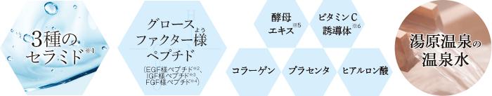 3種のセラミド・グロースファクター様(よう)ペプチド・湯原温泉の温泉水・プラセンタ・ヒアルロン酸