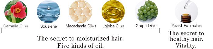 Camelia Oil.Squalene.Macadamia Oil.Jojoba Oil.Grape Oil.Yeast Extract