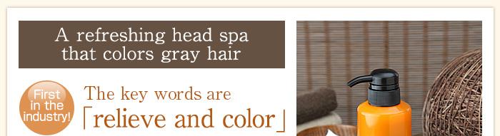 白髪染めで爽快ヘッドスパ。業界初!キーワードは「癒して染める」