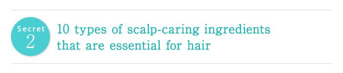 ヒミツ2 女性の髪に大切な10種類の頭皮ケア成分