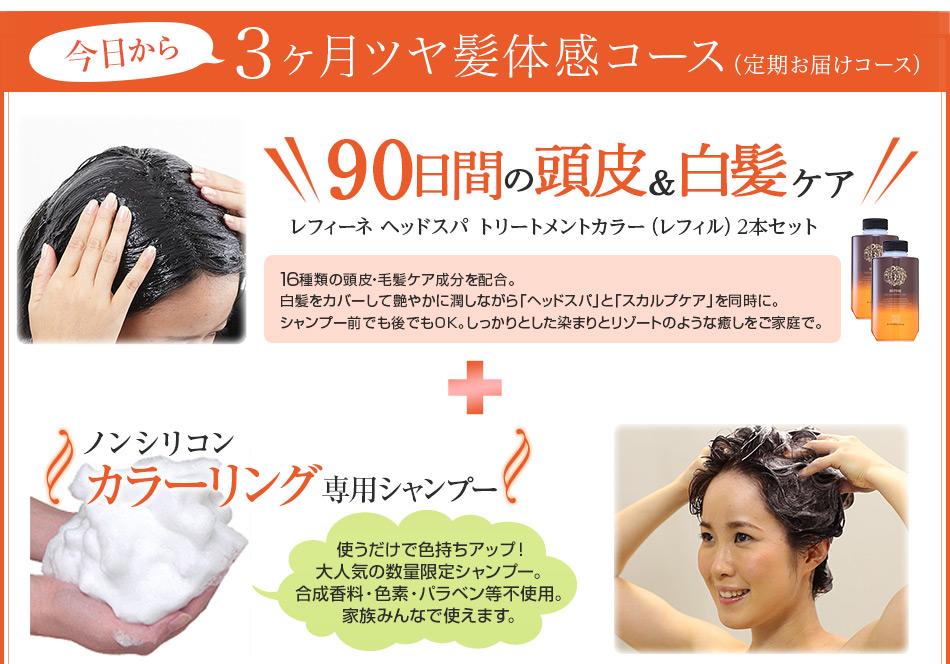 3ヶ月ツヤ髪体感コース