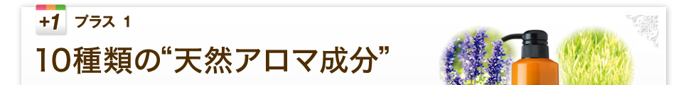 """10種類の""""天然アロマ成分"""""""