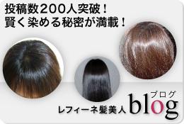 髪美人ブログ